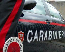 Testa d'asino davanti agenzia funebre | Sardegna | Regionali